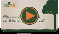 Sustainable Wood Energy Video